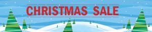 Christmas-Sale-2012