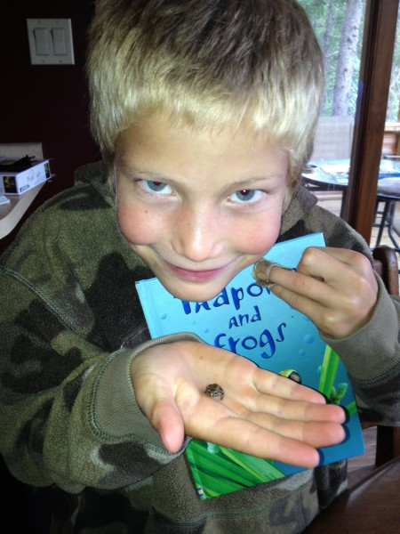 """Trevor Y delights in his real-life study of frogs and tadpoles. As his mom says, Sonlight has given their family the gift of the love of learning!"""