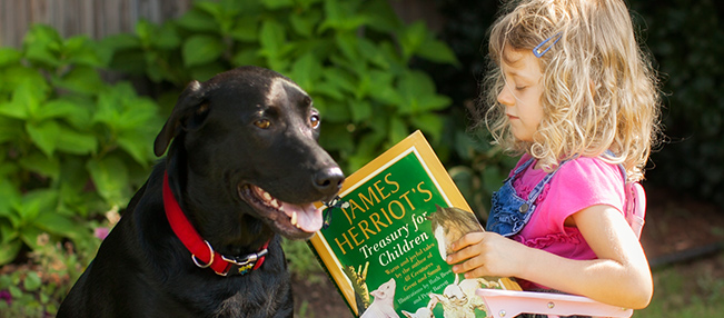 Our goal for teaching our daughter at home was to develop in her a love for learning and a love for reading. Sonlight has played a major role in doing just that. I have been delighted with the book selections with characters and themes emphasizing values that we build our lives upon such as goodness, godliness and grace. Sonlight has put together educational selections that we did not have the time or resources to put together ourselves, enabling us to teach our daughter efficiently and confidently. In their third year with Sonlight, Elise (5) enjoys her Kindergarten Full-Grade Package, especially when she gets to read her books to her best friend, Pip. - The B family, Guthrie, OK