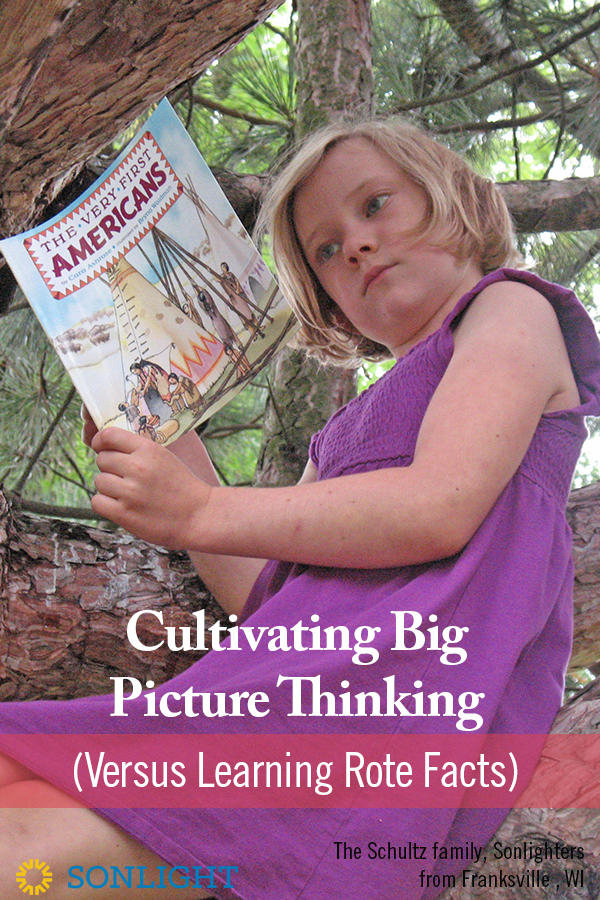 Cultivating Big Picture Thinking (Versus Learning Rote Facts)