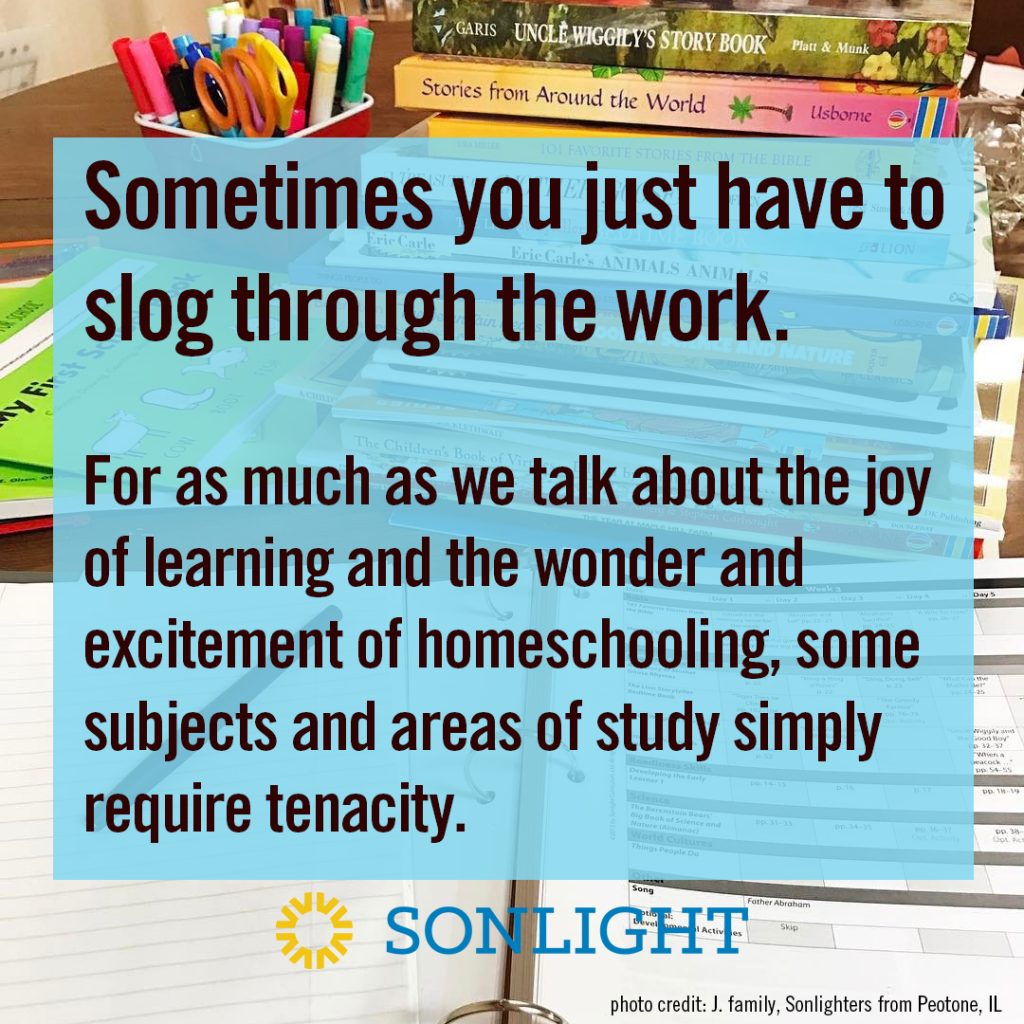 6 Steps to Fit in All the Subjects for Homeschooling Each Day • homeschooling • homeschool scheduling • Sometimes you just have to slog through the work. For as much as we talk about the joy of learning and the wonder and excitement of homeschooling, some subjects and areas of study simply require tenacity.