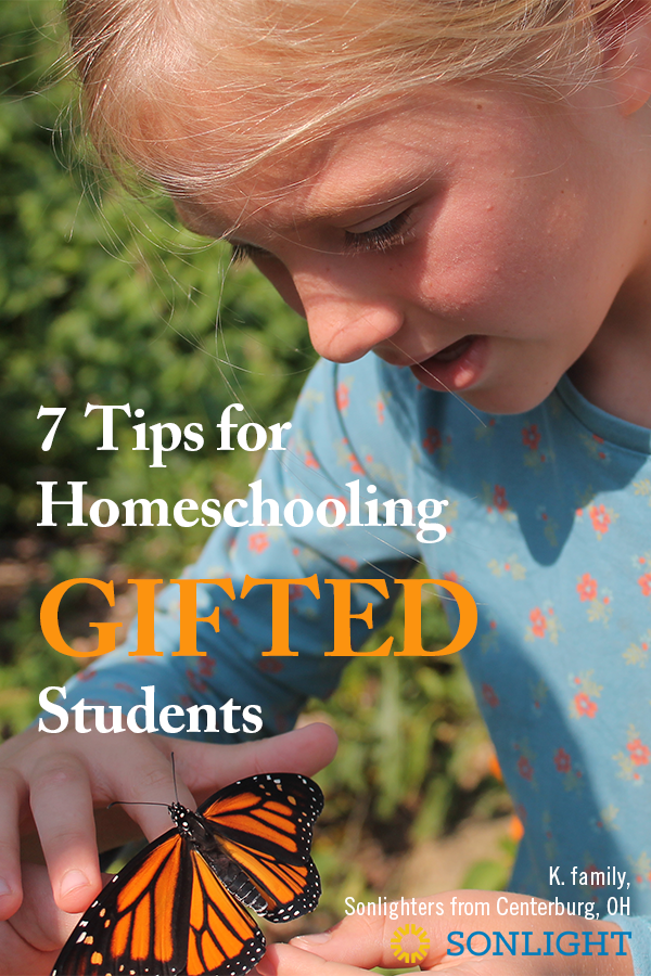 7 Tips for Homeschooling Gifted Students • accelerated learners • special needs • When homeschooling gifted students, your curriculum isn't the ending point. It's a jumping off point.