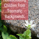 6 Keys to Homeschooling Children From Traumatic Backgrounds