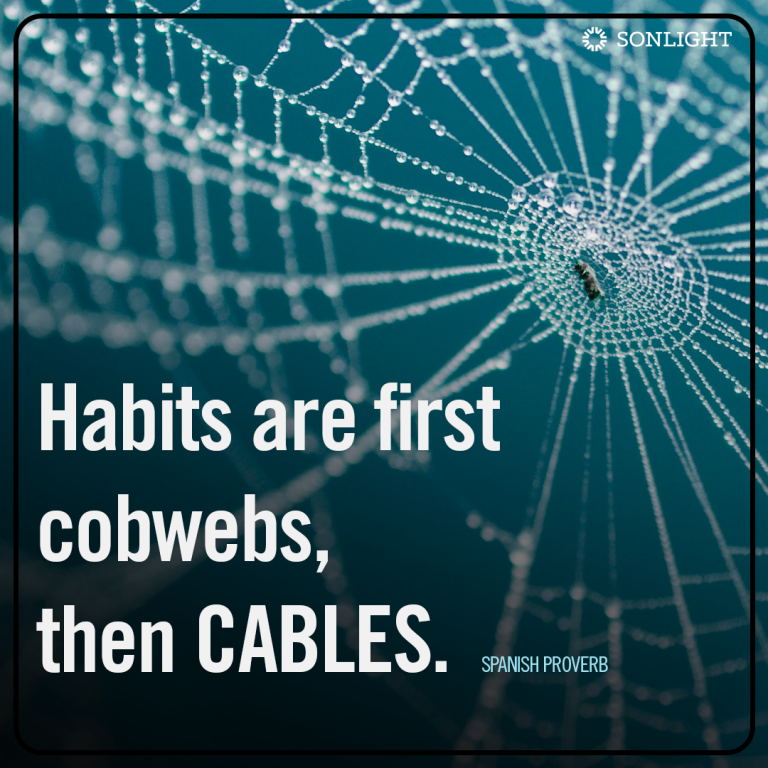 Habits are first cobwebs, then cables. (Spanish proverb)
