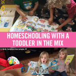 Homeschooling with a Toddler in the Mix