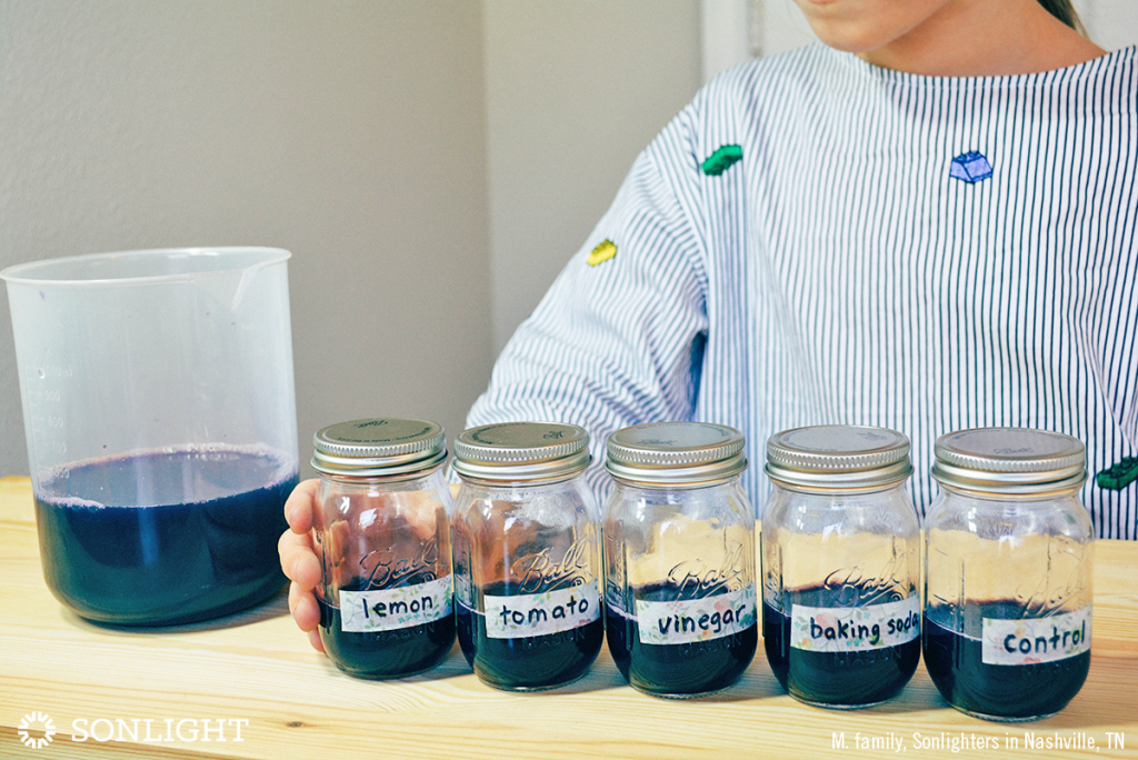 Pour a roughly equal amount of anthocyanin indicator into each labeled jar.