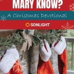 What Did Mary Know? A Christmas Devotional