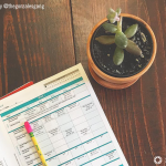 8 Ways I Re-evaluate My Homeschool for the New Year